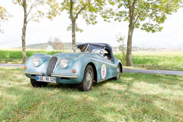 Ein alter Jaguar im Grünen