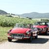MG B Cabrio Rally Rallyewagen Oldtimerrallye